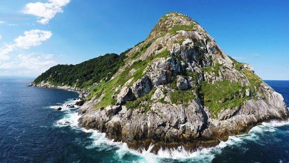 جزیره ی مارها در برزیل / ناقوس مرگ برای توریست ها!